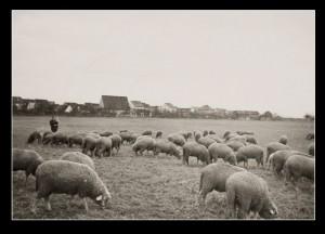 07.Vater mit Herde und Kind